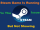 Steam Game Is Running But Not Showing